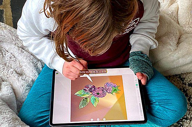 """Kaip nustatyti """"iPad"""" modelius"""