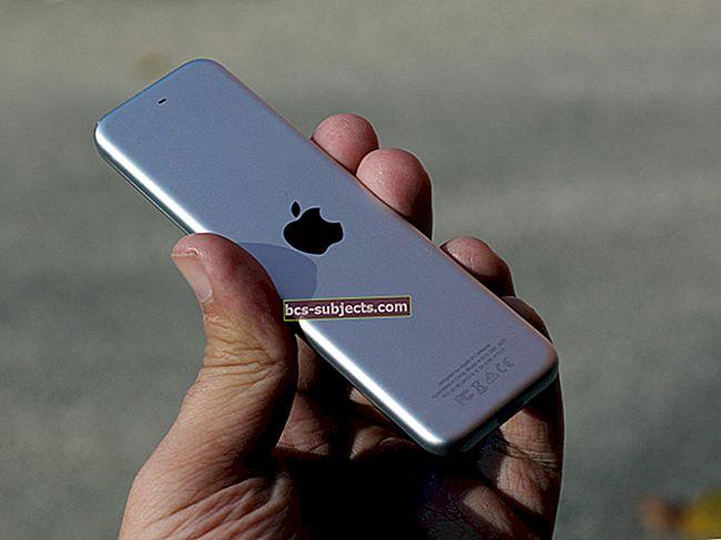 Minu iPhone'is pole ühtegi Siri, kus on Siri?